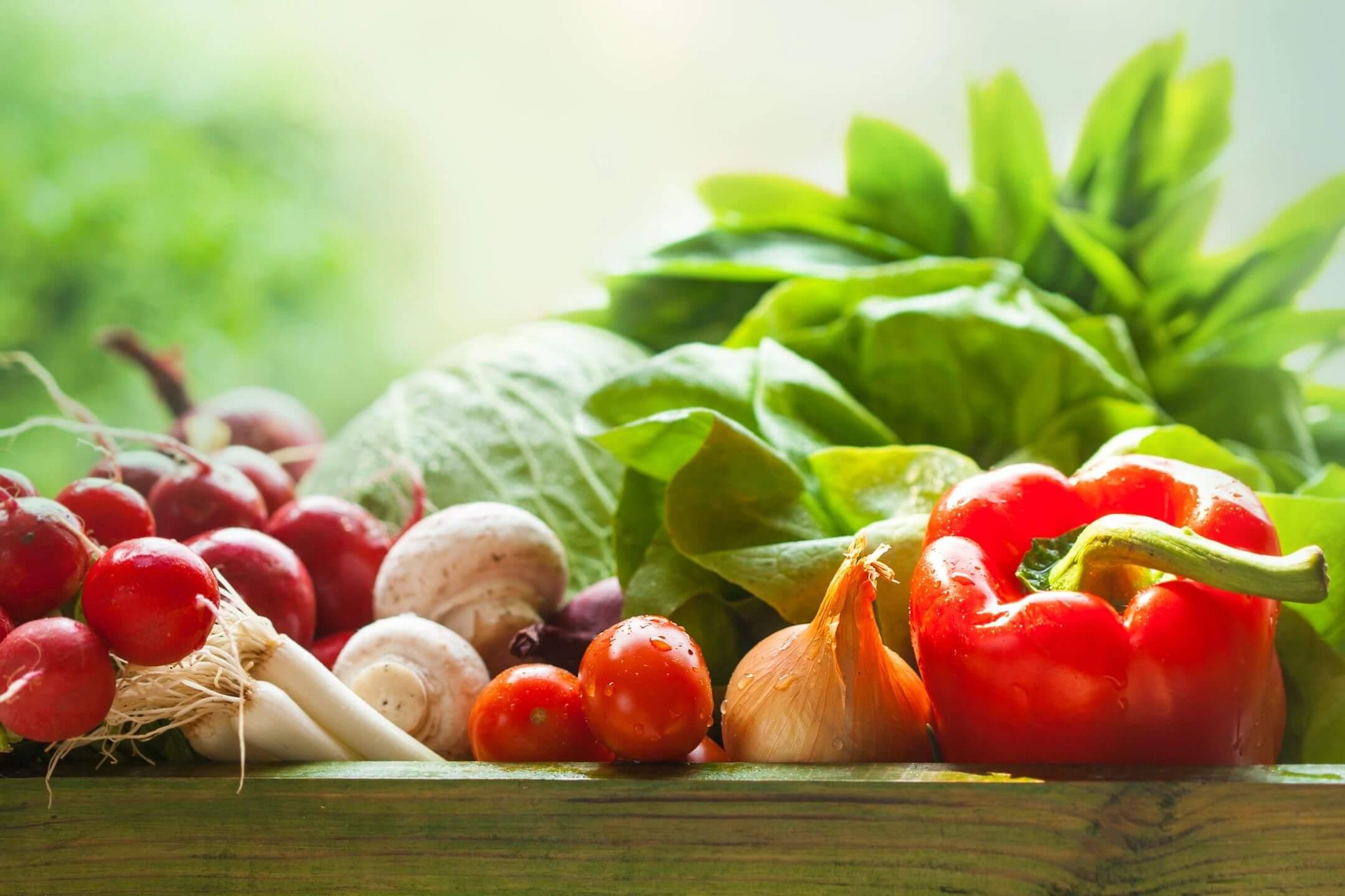 Senior Nutrition: Essential Tips