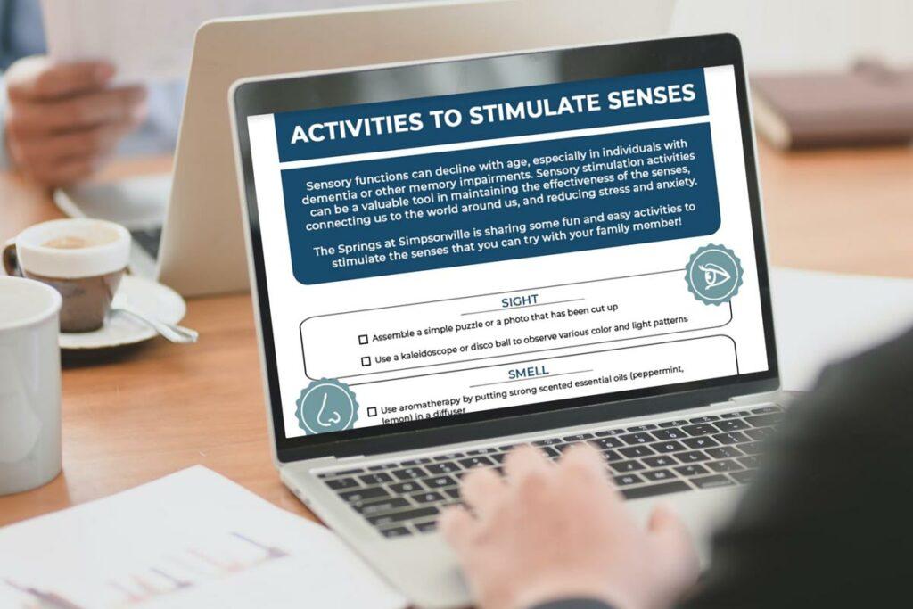 The Springs_Stimulate Senses